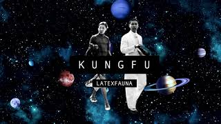 LATEXFAUNA KUNGFU  Audio & Lyrics