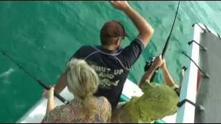 Рыбалка на побережье австралии находиться сидней