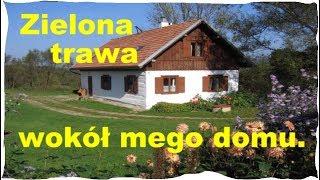 Green Green Grass Of Home -  Waldemar Kocoń