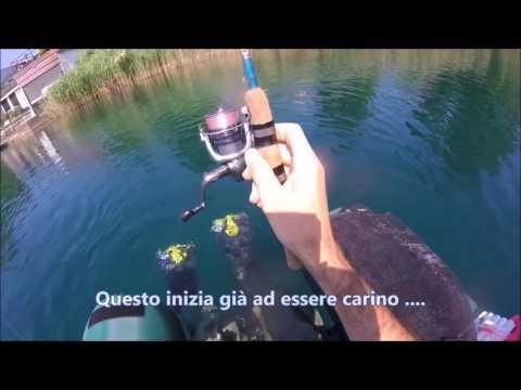 La pesca su un crucian nella primavera da barca video