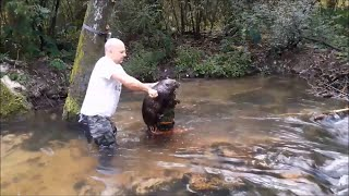When Beaver Trapping Goes Wrong