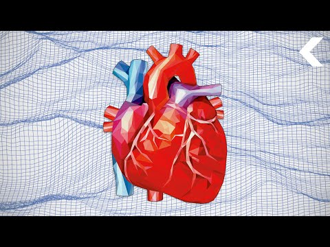 Revolutionizing Heart Surgery With Virtual Reality