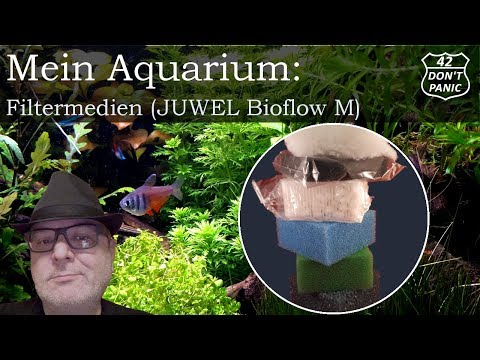 Filtermedien - JUWEL Bioflow M   Mein Aquarium 31