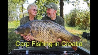 Carp Fishing In Croatia