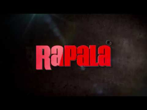 Воблер Rapala Shadow Rap Shad Deep SDRSD09 MBS фото №1