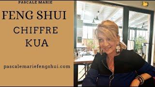 Vidéo :  Soyons aussi logique  dans le FENG SHUI !