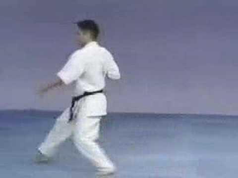 kyokushin karate kata videos free download