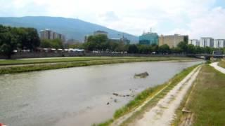 アキーラさん観察①旧ユーゴスラビア・マケドニア・スコピエ・ヴァルダル川!Skopje,Macedonia