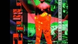 2Pac Strictly 4 My Niggaz - Last Wordz
