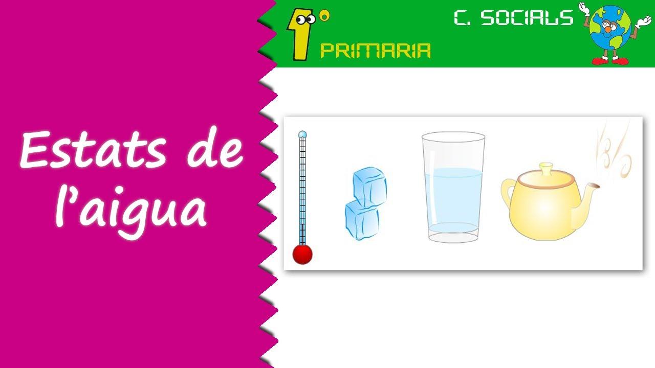Ciències Socials. 1r Primaria. Tema 6: Els estats de l'aigua