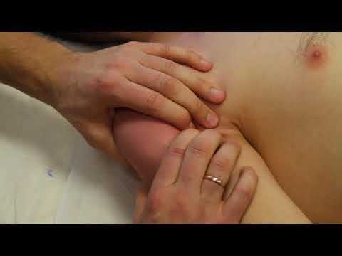 Hipertenzija ir vaistiniai augalai