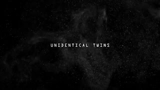 John Ellis Unidentical Twin Official Video Gondwana Records