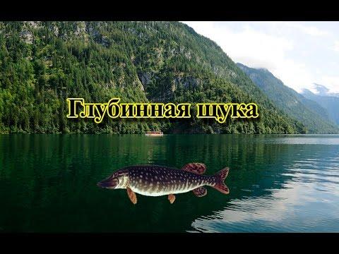 Русская Рыбалка 3.99 Глубинная щука рекорд