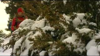 preview picture of video 'paseo invernal por Fuenfria'