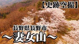 【名所空撮】春の妻女山(長野県長野市)