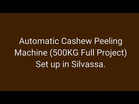 Industrial Automatic Cashew Nut Peeling Machine