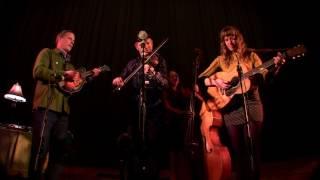 Foghorn Stringband 2017-01-13