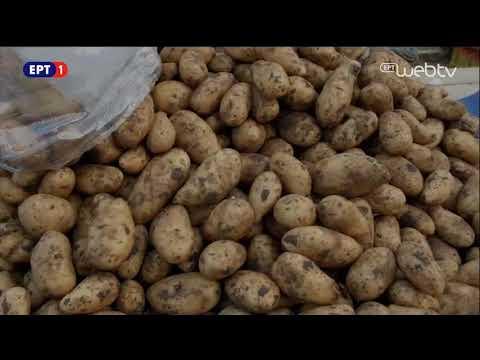Τα Στέκια – «Λαϊκή Αγορά» 08Οκτ2017 | ΕΡΤ