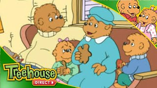 The Berenstain Bears   Weather Change