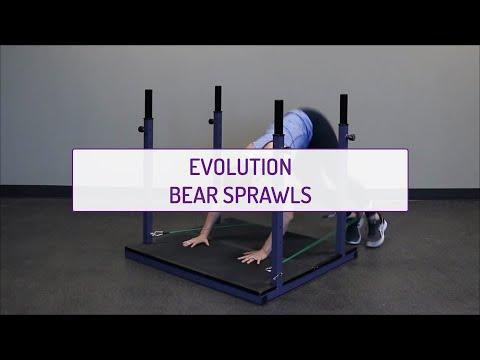 Evolution Bear Sprawls