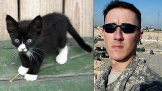 Cute kitten saves Veteran's life and he returns the favor