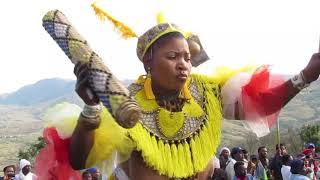 Shembe; Mrs Mncwango Ehambisa Isicephu