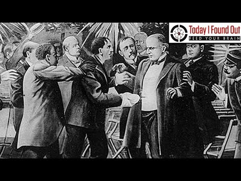 The First Presidential Assassination Attempt