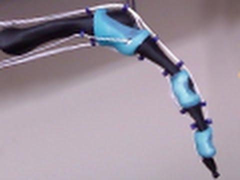 Anthropomorphic Robotic Finger with Bio-mimetic Joints