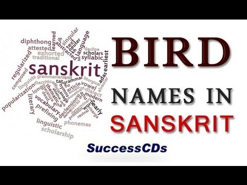 Bird Names in Sanskrit Bird Names in Sanskrit