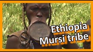 Ethiopia 2007 052 - Mago National Park