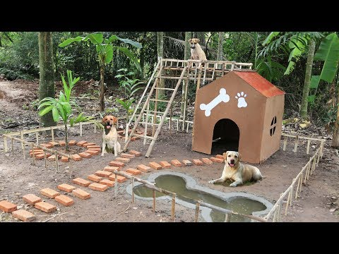 Build dog house and Build mini swimming pool for dog