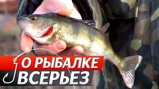 О рыбалке всерьез ловля окуня спиннингом