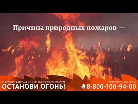 Видеоролик федеральной информационной противопожарной кампании «Останови огонь!»