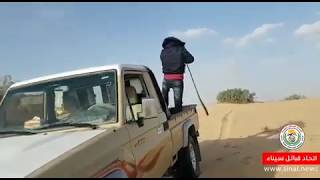 اتحاد قبائل سيناء يداهم أوكار التكفيريين في سيناء ويحرقها