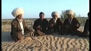 Каракумы, туркмены и кобра