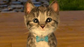 МИ-МИ-МИШКИ РАЗВЛЕКАТЕЛЬНОЕ ВИДЕО для детей СИМУЛЯТОР котика Мой Маленький КОТЕНОК как Том ПУРУМЧАТА