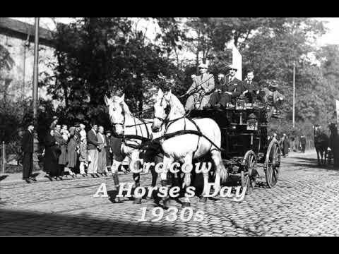 Tadeusz Faliszewski - Kiedy znów zakwitną białe bzy, 1929