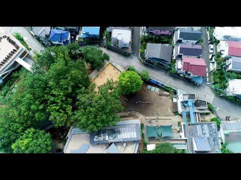 空から見た町田自然幼稚園