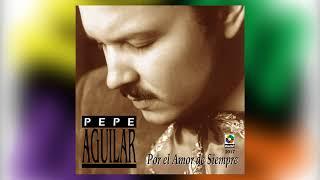 Despues De Tanto   Pepe Aguilar Del álbum Por El Amor De Siempre