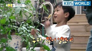 King of creativity Seungjae, chocolates grew from a tree? [The Return of Superman/2018.02.04]