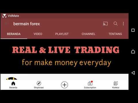 Tranzacționarea valutară cu marjă
