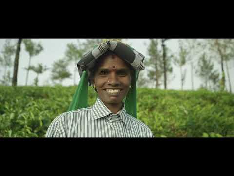 Indien Reisen Video Impressionen