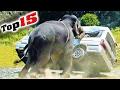 Die 15 GEFÄHRLICHSTEN Tiere Der Welt! 👹