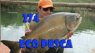 Programa Fishingtur na TV 274 - Pesqueiro Eco Pesca