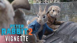PETER RABBIT 2 Vignette - Your Favorite Characters are Back!