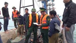 Quảng Nam tiềm ẩn nhiều nguy cơ mất an toàn giao thông đường sắt