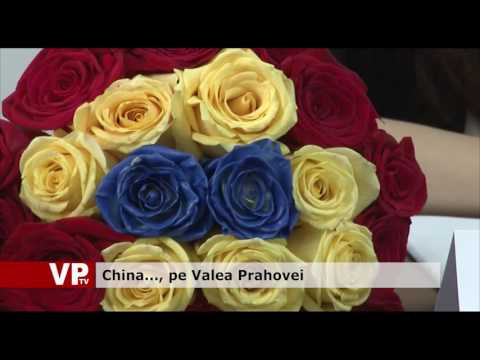 China, pe Valea Prahovei