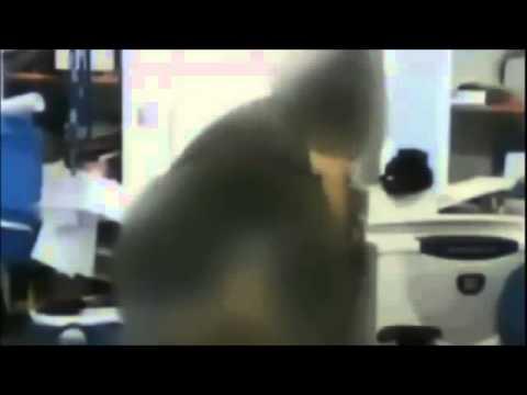 Inspetor é flagrado fazendo sexo dentro de escola