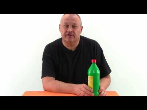 Die Hauptsyndrome und die Symptome des Alkoholismus