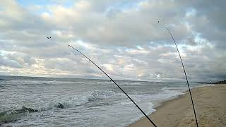 Форумы - калининградский рыболовный клуб
